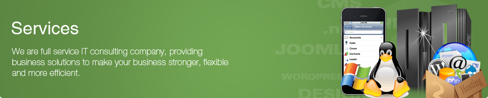 service-graphic